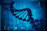 Британия запускает революционную программу в области геномики