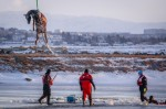 Из озера извлекли 12 утонувших лошадей | ФОТО