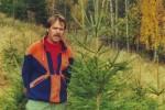 Норвежские елки перестали пользоваться спросом за рубежом