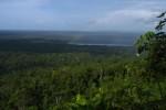 Норвегия продолжает поддерживать экологическую стратегию Гайаны