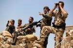 Швеция отправит в Курдистан 20 военных экспертов