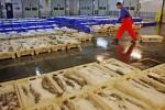 Испания стала главным импортером исландской трески