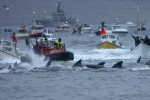 Морской дозор вернется на Фарерские острова в 2015 году