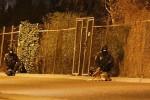 Подозреваемый в стрельбе в Копенгагене убит