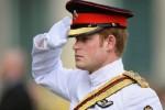 Принц Гарри покидает армию и ищет новую работу