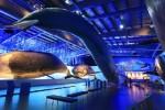 В Исландии открылся самый большой в Европе музей китов