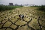 Синоптики предупреждают Китай об ухудшении экологической обстановки в стране