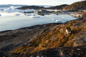 Квайя, район в Гренландии, где в большом количестве сохранились следы древних народов