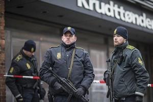 Полиция Копенгагена во время февральских событий