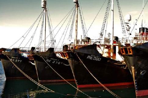 Китобойные суда в порту Рейкьявика
