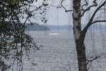 Неопознанное судно в шведских водах не было российской подлодкой
