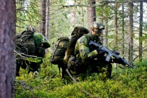 В настоящее время шведская армия насчитывает 50000 человек