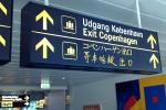 Дания планирует собирать все данные о пассажирах авиарейсов