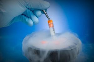 Для некоторых женщин замороженная яйцеклетка — единственный способ иметь в будущем детей
