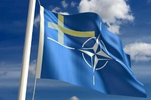 Флаг сторонников вступления Швеции в Североатлантический Альянс