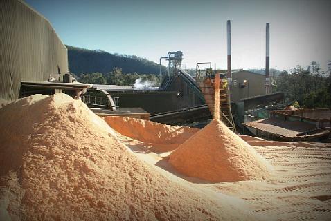 Горы опилок станут дешевым сырьем для биотоплива