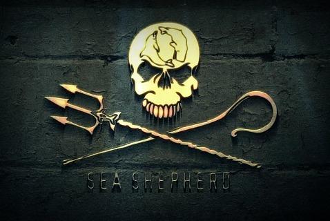 Логотип Sea Shepherd