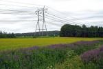 Россия начинает импортировать электроэнергию из Финляндии