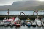 Фарерские острова и Гренландия желают независимых квот на вылов рыбы