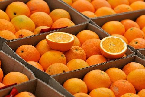 Мы делили апельсин... (фото)