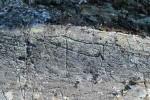За норвежским полярным кругом найдены древние петроглифы