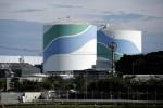 Япония запускает первый за четыре года ядерный реактор