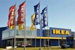 Марокко отказала IKEA в открытии мебельных магазинов в стране