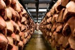 Датские свиноводы терпят убытки в течение последних 10 лет