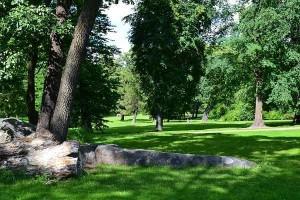 Парк Кайвопуйсто, Хельсинки