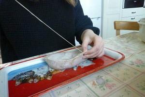 Оболочку для исландской кровяной колбасы сшивают из овечьих желудков