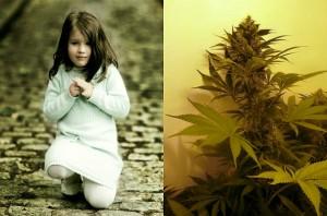 Результаты исследования не означают, что марихуана полезна для развития ребенка