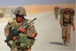 Дания не будет направлять наземные войска на борьбу с ИГИЛ