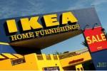 Рост по всем направлениям: IKEA не знает, что такое кризис
