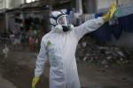 В Дании зафиксирован первый случай заражения вирусом Зика