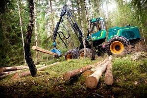 Экспорт леса в Великобританию — важная часть шведской экономики