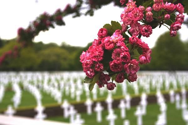 Кладбище в Кембридже