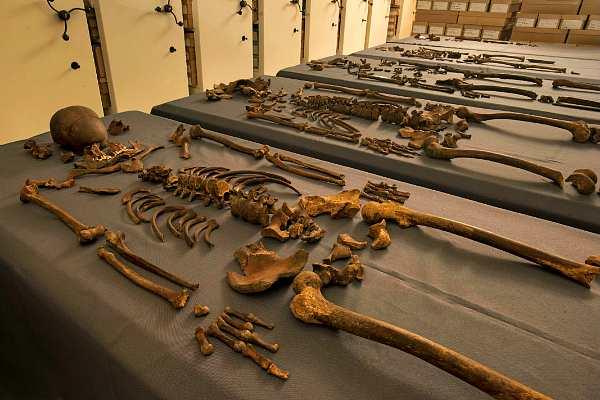 Человеческие скелеты, зараженные чумой